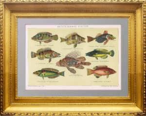 Антикварный подарок рыбаку в Москве