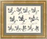 Высшая школа верховой езды. 1896г. Старинная гравюра 19 века - антикварный VIP подарок