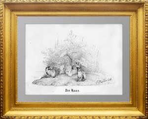Хайдер. Зайцы. 1867г.  Старинная литография. Замечательный подарок охотнику.