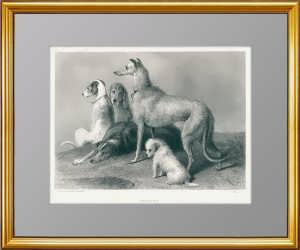 Ожидание. 1878г. Ландсир/Уэбб. Подарок охотнику. Музейный экземпляр