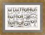 Мундштуки (конская упряжь) 2. 1787г. Оригинальная гравюра - антикварный подарок